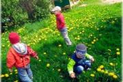 Наблюдение за изменением в природе весной с ребенком